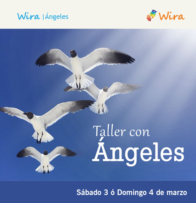 wira taller angeles colombia mod right