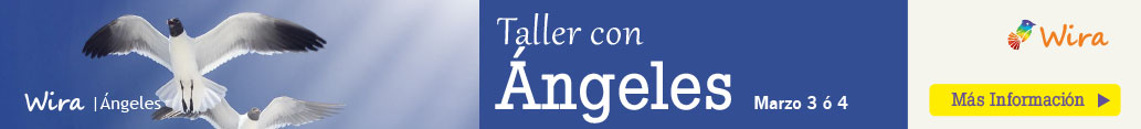 wira taller angeles colombia